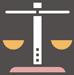 Opieka prawnika